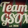 Team G.S.O.X. Aufnäher